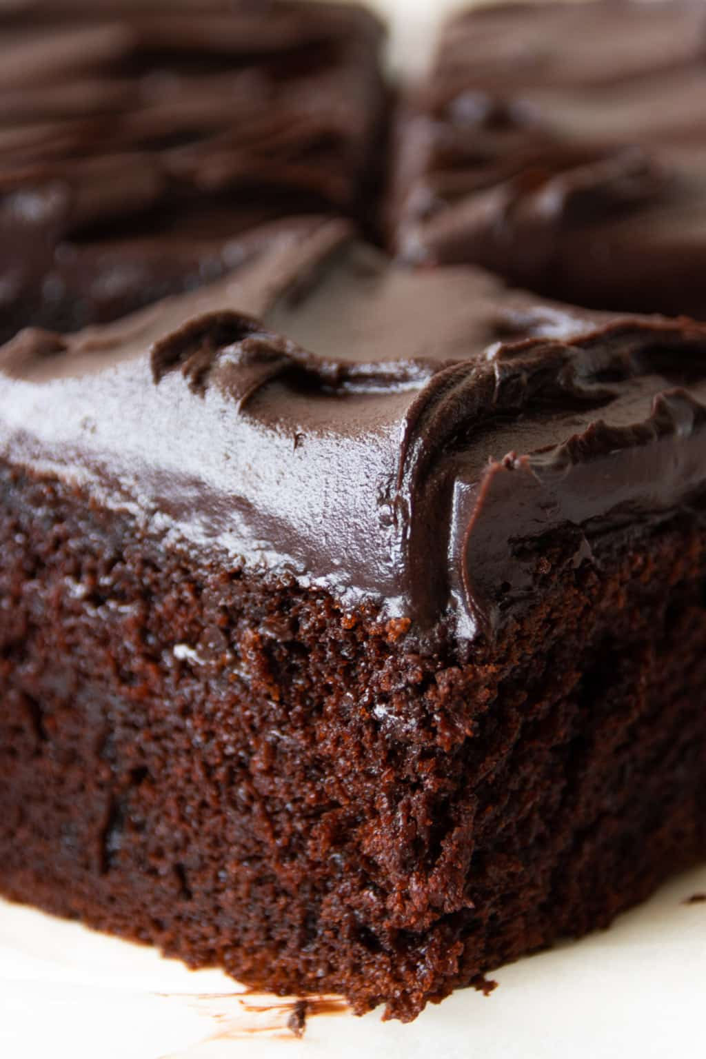 Close-up view of chocolate cake's moist and tender crumb